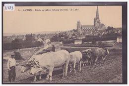 AUTUN - BOEUFS AU LABOUR - TB - Autun