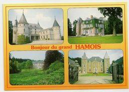 Bonjour Du Grand HAMOIS - Châteaux De Natoye - Emptinne - Hamois. Edition Hiernaux-Namur. - Hamois
