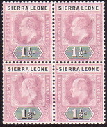 SIERRA LEONE 1905 SG #88 1½d In A Block Of 4 MLH/MNH CV £12 As Singles Light (pencil?) Trace On Left Stamps - Sierra Leone (...-1960)