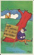 Visitez LE CHATEAU DE LA BELLE AU BOIS DORMANT , Une Vraie Vie De Château , Signée : C. FRANCIS - Illustrateurs & Photographes