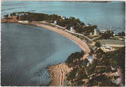 Morbihan : L Ile  Aux  Moines : La  Plage  Et Le  Bois D ' Amour 1965 - Ile Aux Moines