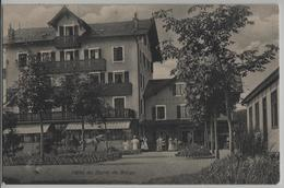 Hotel Du Signal De Bougy - Animee - Pferdekutsche - VD Vaud