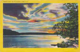 New York Moonlight On Paradox Lake