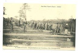 ABIDJAN EXPLOITATION ACAJOU BOIS  METIER CHARGEMENT ANIMATION COTE D IVOIRE AFRIQUE - Ivory Coast