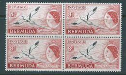 Bermuda 1953 QEII Definitives 8d Tropic Bird Issued 1955 Block Of 4 MNH - Bermuda