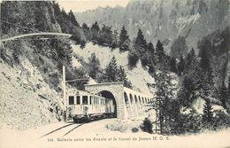 TRAINS SUISSE - Gallerie Entre Les Avants Et Le Tunnel De Jaman M.O.B. - Trains