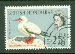 British Honduras: 1962   QE II - Birds   SG209    25c    Used - Honduras Britannique (...-1970)
