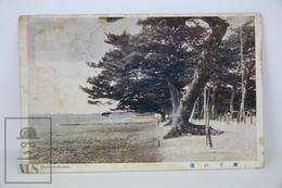 Old 1914 Japan Postcard - Maikonohama - Japón