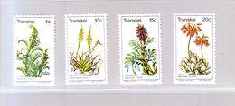 """TRANSKEI -  YT 24/27 - """" Plantes Médicinales """" - 1977 - Neuf ** - Transkei"""