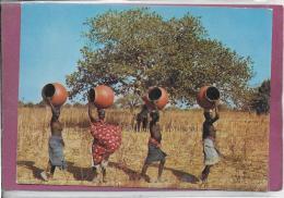 HAUTE-VOLTA  .- Scène De Village - Burkina Faso