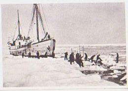 Terre Adélie ?        1        Fangstskap I Isen - TAAF : Terres Australes Antarctiques Françaises
