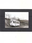 Photo Tram - Bellaire - Entre Bellaire Et Jupille (1955) - Beyne-Heusay