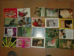 141217 Lot De 20 CPM Couleur Animaux CHATS - Cartes Postales