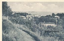 AK Bad Hitzacker, Blick V. Rande Des Weinberges A.d. Stadt U.d. Wiesenlandschaft - Hitzacker