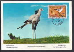 "GHANA - Carte Maximum ""Serpentario - Oriseau Africain""  Cachet Accra 11 Août 1965 - B/TB - - Ghana (1957-...)"