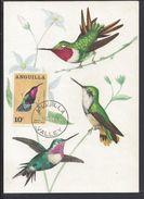 "ANGUILLA - Carte Maximum ""Kolibry - Colibris"" Cachet Anguilla Valley 14 Décembre 1968 - B/TB - - Anguilla (1968-...)"