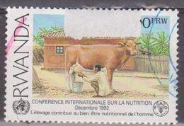 RWANDA 1992 World Conference On Nutrition. USADO - USED. - 1990-99: Usados