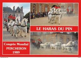 HIPPISME - HARAS - CHEVAUX - PERCHERONS - Congrès Mondial Percheron 1989 Le Haras Du Pin - Attelage De Percherons - CPM - Chevaux