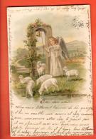 GAN-30  Ange Et Moutons. Précurseur. Cachet 1902 - Angeles