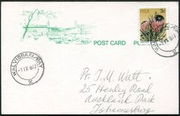 South Africa 1977 WALVIS BAY Pmk Walvisbaai Enclave Return To RSA Post Card Postkarte Südafrika Carte Afrique Du Sud - South Africa (1961-...)