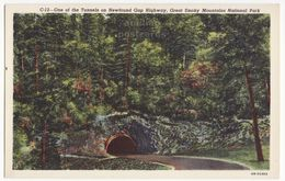 Newfound Gap Highway Tunnel, Smokey Mountains National Park TN Tennessee Vintage Postcard M8899 - Smokey Mountains
