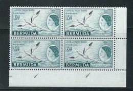 Bermuda 1953 Royal Visit 6d Tropic Bird Plate 1 Block Of 4 MNH - Bermuda