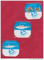 LOT DE 3 MAGNETS  MERLAN / MAQUEREAU / TOURTEAU-  BIEN PECHES VOUS ALLEZ LES AIMER ( SOUS PLASTIQUE ) - Magnets