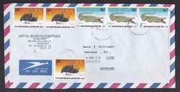 Burundi: Airmail Cover To Netherlands, 6 Stamps, Crocodile, Fowl Bird, Rare Real Use (minor Damage, See Scan) - Andere