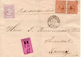 26 APR 93 VOORFRONT Van Aangetekende Brief Van TERNEUZEN N. Arendal Met Paar NVPH39 En 33 Met Puntstempel 79 - Period 1891-1948 (Wilhelmina)