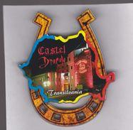 MAGNET -  ROMANIA- Transilvania  -Dracula Castle (6 X8x0.5 Cm) -11 Gr - Tourism