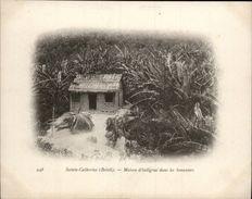 Campagne DUGUAY-TROUIN 1902-1903 - Expédition - BRESIL - Sainte-Catherine - Maison D'indigène Dans Les Bananiers - Brésil