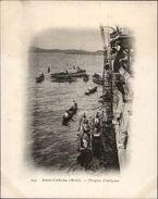 Campagne DUGUAY-TROUIN 1902-1903 - Expédition - BRESIL - Sainte-Catherine - Pirogues D'indigènes - Brésil