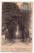 D023 - Montgeron S&O - L'allée Des Peupliers , Route De Crosnes - édit. Lassenay , Villeneuve-Saint-George - Montgeron