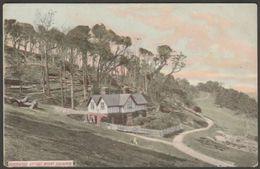 Beechwood Cottage, Mount Edgcumbe, Cornwall, C.1905-10 - Postcard - England