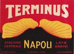 ITALY ITALIA   -  HOTEL LUGAGGE  LABEL - HOTEL TERMINUS - NAPOLI - Hotel Labels