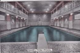 SHELTON HOTEL. SWIMMING POOL. NEW YORK. LUMITONE PHOTOPRINT CIRCA 1950s -BLEUP - Hotel's & Restaurants