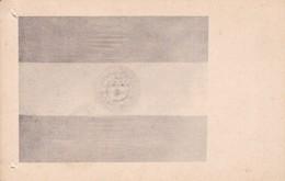 MUSEO HISTORICO SARMIENTO.ESTANDARTE BATALLON EJERCITO ROSAS. GUILLERMO KRAFT LTDA CIRCA 1930s -BLEUP - Museos