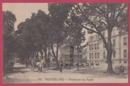 25 - MONTBELIARD----Promenade Des Fossés--Attelage---animé - Montbéliard