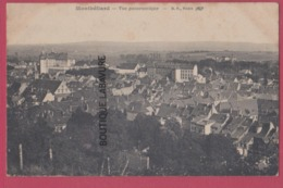 25 - MONTBELIARD--Vue Panoramique - Montbéliard