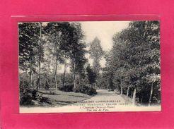 77 Seine Et Marne, Rare, Chamigny, Orphelinat Horticole Edgar Hirtz, Association Léopold-Bellan, 1939 - Frankrijk
