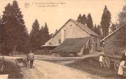 Belgique - Près De Jalhay - Le Moulin De Dison En Fagne (attelage D'âne) - Jalhay