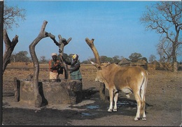 SENEGAL - CONTADINE AL POZZO - VIAGGIATA 1994 FRANCOBOLLO ASPORTATO - Senegal
