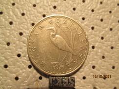 HUNGARY 5 Forint 1999 # 6 - Hungary