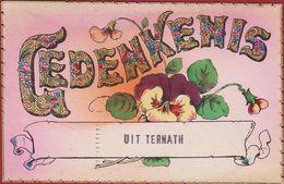 Gedenkenis Uit Ternath Ternat ZELDZAAM - Ternat