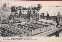 Ruysselede Ruiselede Weldadigheidschool Bloemhof En Broeikassen Geanimeerd ZELDZAAM (zeer Goede Staat) - Ruiselede