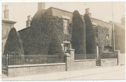 Unidentified House With Conifers - England