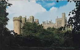 Arundel Castle (pk40853) - Arundel