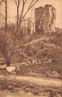 BEAUMONT - La Tour Salamandre. - Beaumont