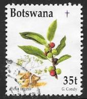 Botswana, Scott # 669 Used Berries, Christmas, 1998 - Botswana (1966-...)