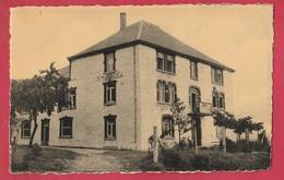 Champlon-Ardennes - Centre De Vacances A.E.P. -1954 ( Voir Verso ) - Tenneville